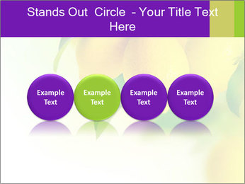0000077712 PowerPoint Template - Slide 76