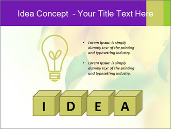 0000077712 PowerPoint Template - Slide 80