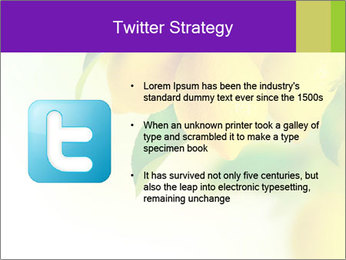 0000077712 PowerPoint Template - Slide 9