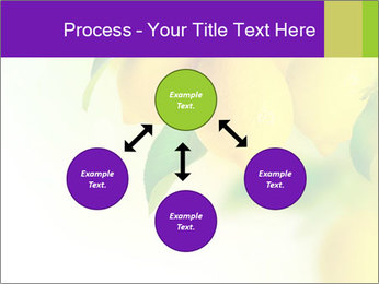 0000077712 PowerPoint Template - Slide 91