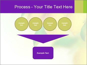 0000077712 PowerPoint Template - Slide 93