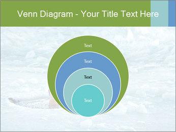 0000077716 PowerPoint Template - Slide 34