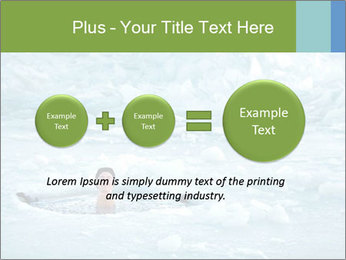 0000077716 PowerPoint Template - Slide 75