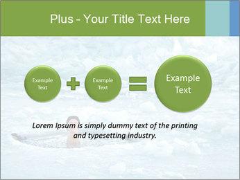 0000077716 PowerPoint Template - Slide 75