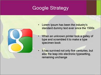 0000077720 PowerPoint Template - Slide 10