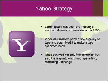 0000077720 PowerPoint Template - Slide 11