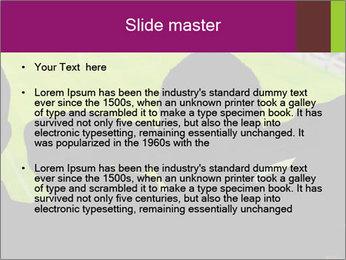 0000077720 PowerPoint Template - Slide 2