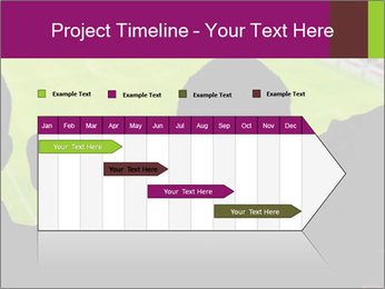 0000077720 PowerPoint Template - Slide 25