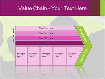 0000077720 PowerPoint Template - Slide 27