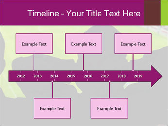 0000077720 PowerPoint Template - Slide 28