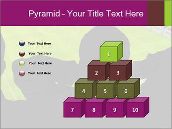 0000077720 PowerPoint Template - Slide 31