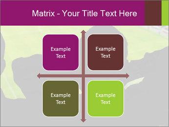 0000077720 PowerPoint Template - Slide 37