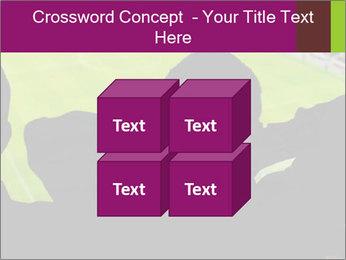 0000077720 PowerPoint Template - Slide 39