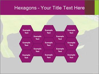 0000077720 PowerPoint Template - Slide 44
