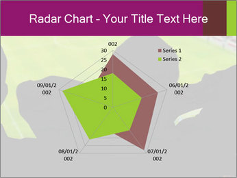 0000077720 PowerPoint Template - Slide 51