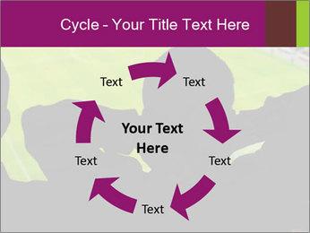 0000077720 PowerPoint Template - Slide 62