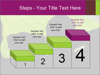0000077720 PowerPoint Template - Slide 64