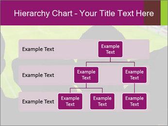 0000077720 PowerPoint Template - Slide 67