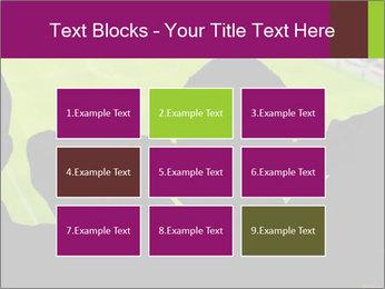 0000077720 PowerPoint Template - Slide 68