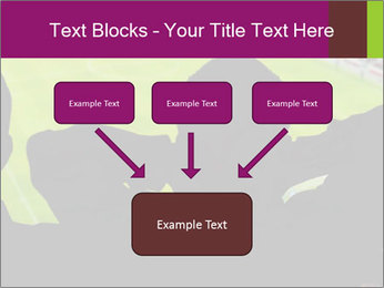 0000077720 PowerPoint Template - Slide 70