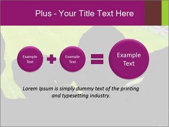 0000077720 PowerPoint Template - Slide 75