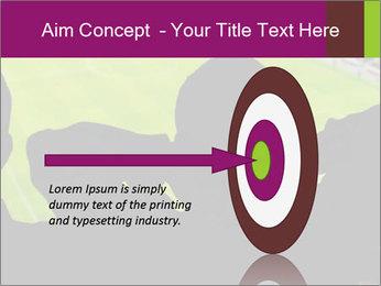 0000077720 PowerPoint Template - Slide 83