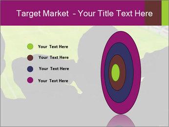 0000077720 PowerPoint Template - Slide 84