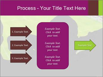 0000077720 PowerPoint Template - Slide 85