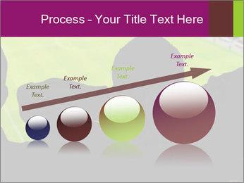 0000077720 PowerPoint Template - Slide 87