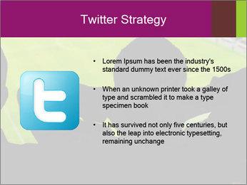 0000077720 PowerPoint Template - Slide 9
