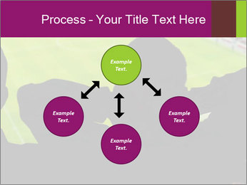 0000077720 PowerPoint Template - Slide 91