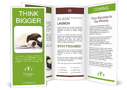 0000077725 Brochure Template