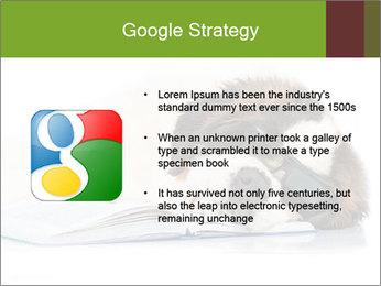 0000077725 PowerPoint Template - Slide 10