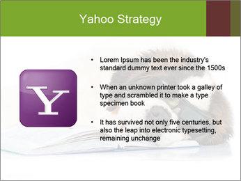 0000077725 PowerPoint Template - Slide 11