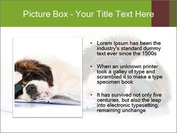 0000077725 PowerPoint Template - Slide 13