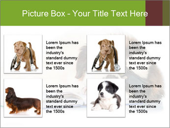 0000077725 PowerPoint Template - Slide 14