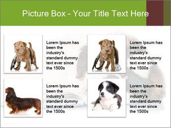 0000077725 PowerPoint Template - Slide 14