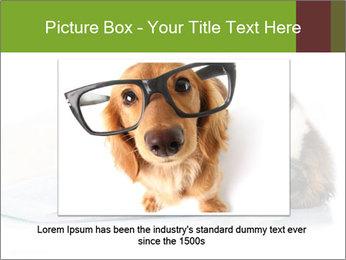 0000077725 PowerPoint Template - Slide 15