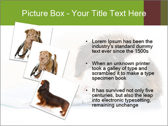 0000077725 PowerPoint Template - Slide 17