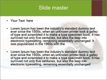 0000077725 PowerPoint Template - Slide 2