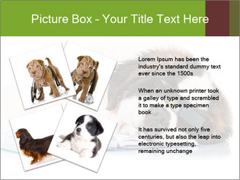 0000077725 PowerPoint Template - Slide 23