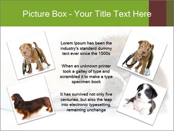 0000077725 PowerPoint Template - Slide 24