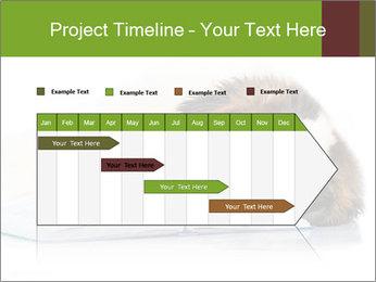 0000077725 PowerPoint Template - Slide 25