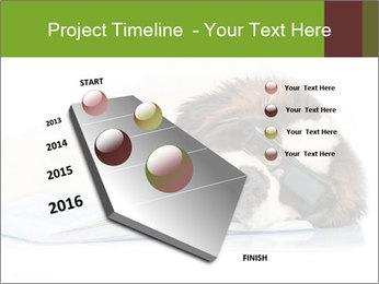 0000077725 PowerPoint Template - Slide 26