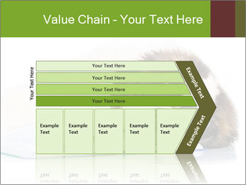0000077725 PowerPoint Template - Slide 27