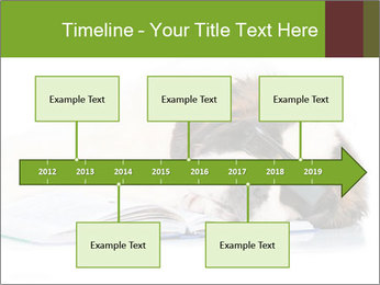 0000077725 PowerPoint Template - Slide 28