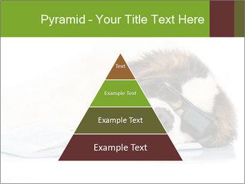 0000077725 PowerPoint Template - Slide 30