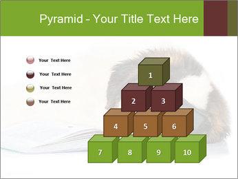 0000077725 PowerPoint Template - Slide 31