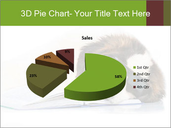0000077725 PowerPoint Template - Slide 35