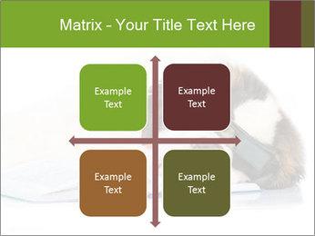 0000077725 PowerPoint Template - Slide 37